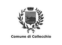 _0018_Comune di Collecchio