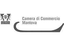 _0022_Cam Com Mantova